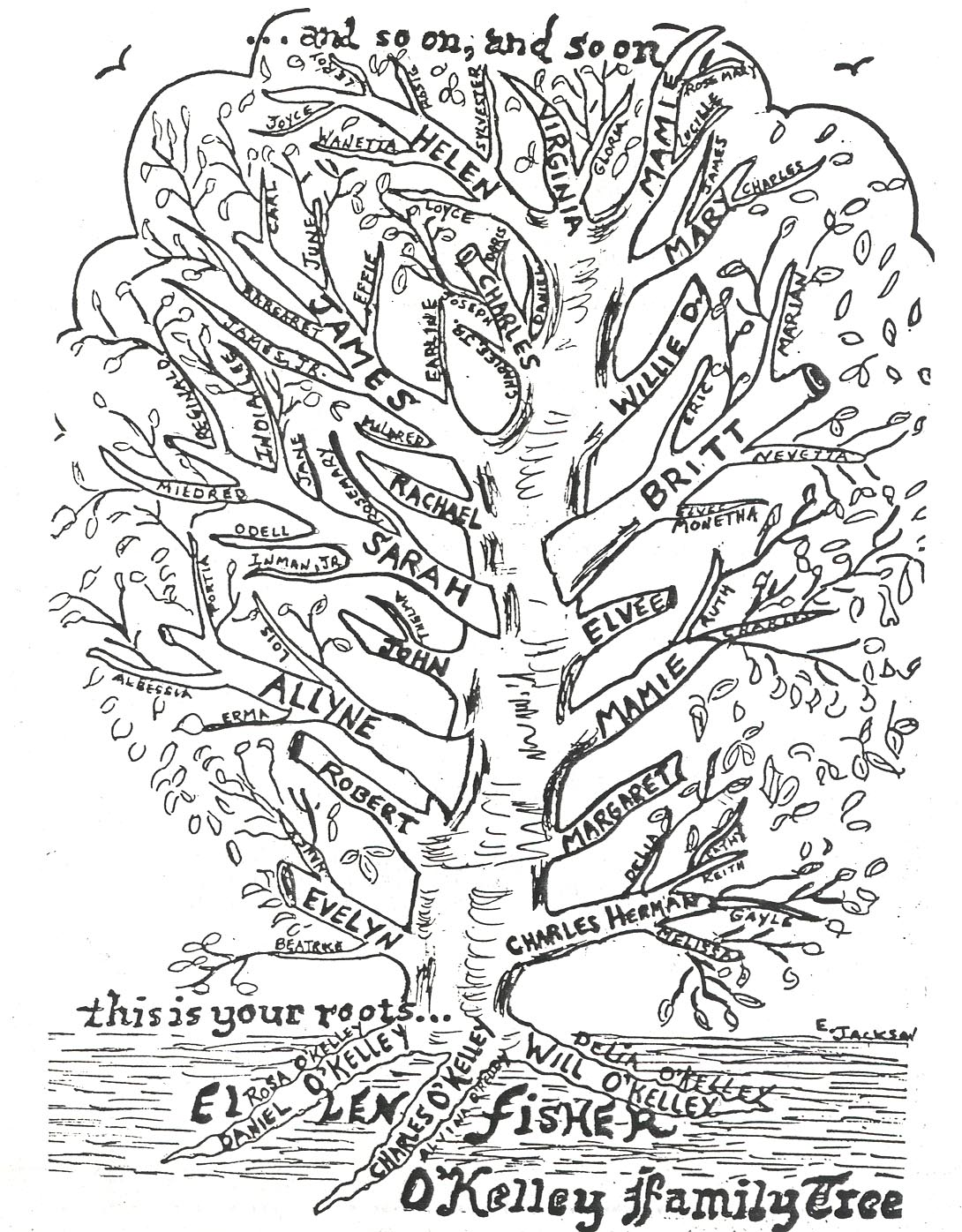 Cool Family Tree Drawings Disclaimer This Tree Was